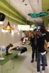 DAAP Student Showcase